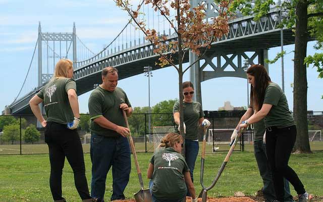 Verizon Green Team Tree Planting for Super Bowl