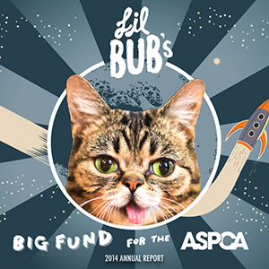 lil-bubs-big-fund