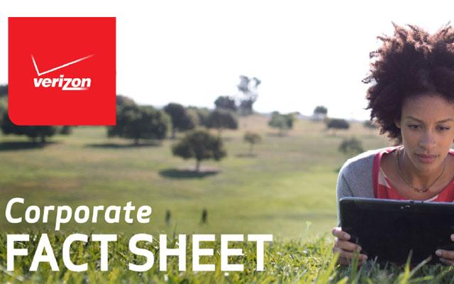 Verizon 2013 Corporate Fact Sheet