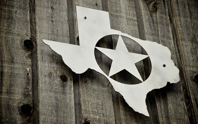 Texas state outline