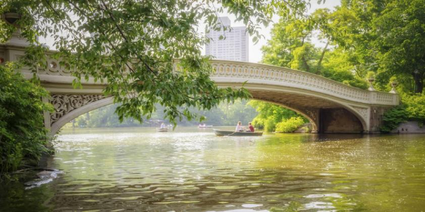 A quiet moment in Central Park