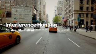 Interference Hunting NY | Best for a good reason.