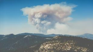 Wildfire data relief