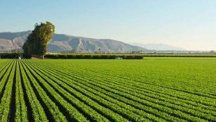 Cutting-edge tech is making farming cool