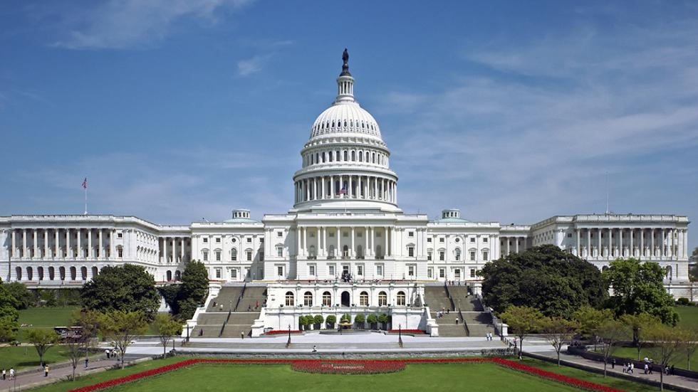 Image of the Capitol Building in Washington