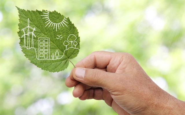 Green Energy leaf