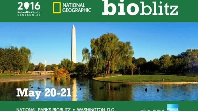 Verizon helps connect thousands of students to nature at Washington, D.C., area national parks during BioBlitz 2016