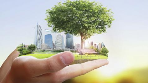 Green community held in hand