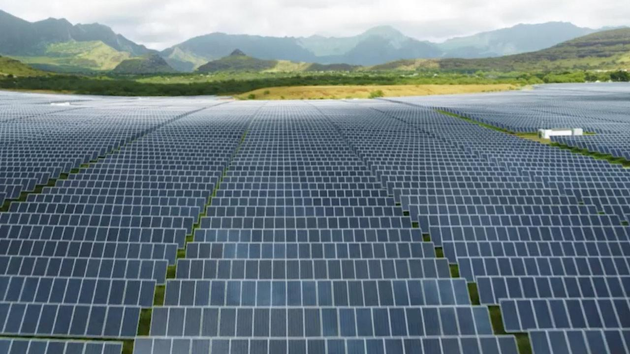 Image of a Hawaiian Electric solar field.