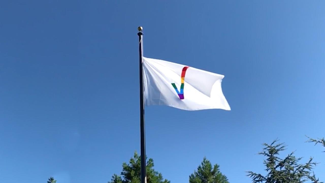 image of a Verizon flag