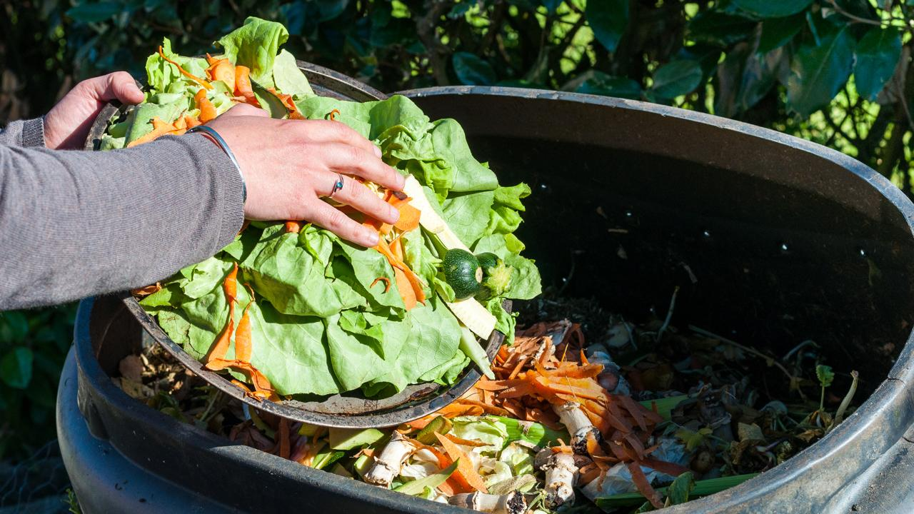 Yes, you can power your phone with food scraps | About Verizon