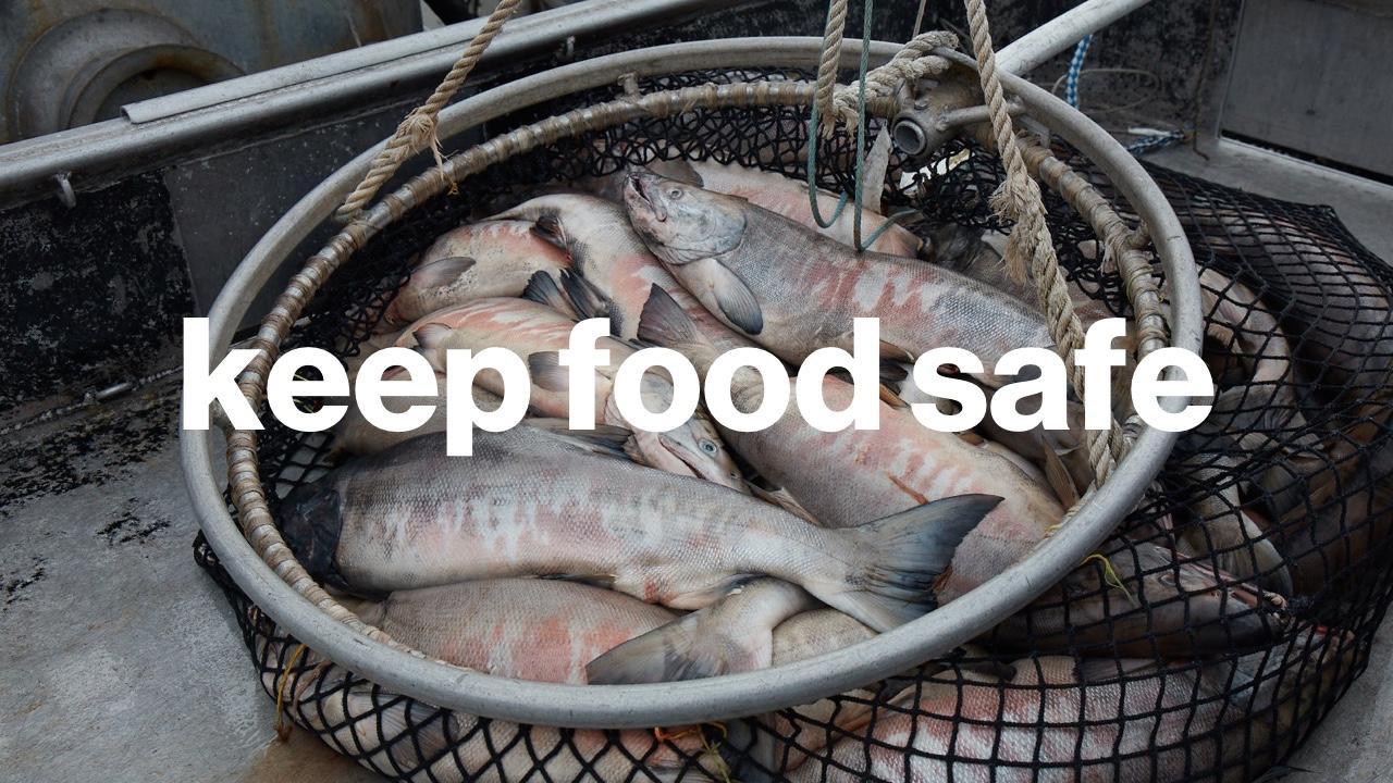 Keep Food Safe